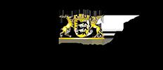 Logo Innogator